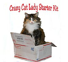 Crazy Cat Lady Starter Kit Photographic Print