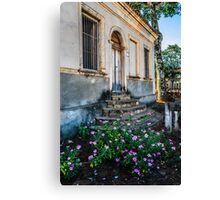 countryside home Canvas Print