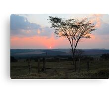 sunset with silhouetted tree and dust Canvas Print
