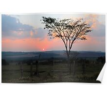 sunset with silhouetted tree and dust Poster