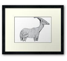 An Okapi-Parasaurolophus  Framed Print