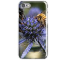 Bumble Bee & The Wasp iPhone Case/Skin