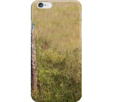 Field with bird on fence iPhone Case/Skin
