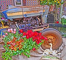 Floral tribute to Tractor by Graeme  Hyde