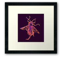 Woolly Aphid 2 Framed Print