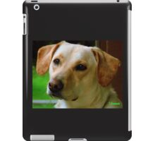 Molly Dog iPad Case/Skin