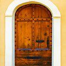 Vintage mahogany door in Bormes les Mimosas, France by E ROS