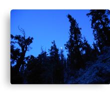 Moonlit Hike Canvas Print