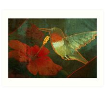 Humming - Bird Art Print