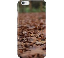 Autumn Beauty iPhone Case/Skin