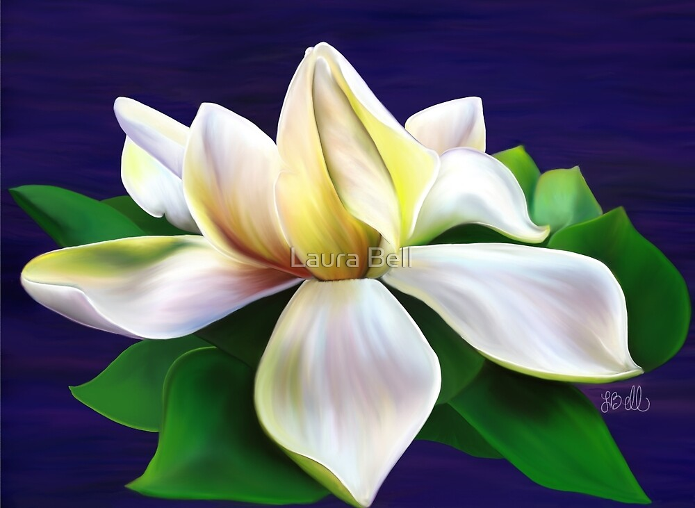 Gardenia by Laura Bell