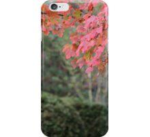 Autumn Pink iPhone Case/Skin