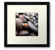 Orange Lady Framed Print