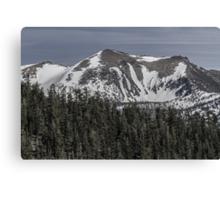 Freel Peak Canvas Print