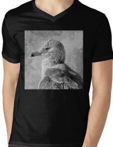 Seagull Portrait Mens V-Neck T-Shirt
