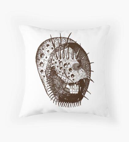 heat death of the universe Throw Pillow