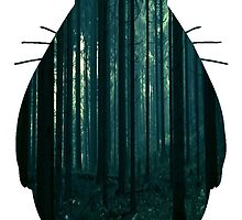 Forest Totoro by CheshireCat13