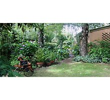 cute bike in Longford garden  Photographic Print