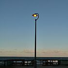 Beachside Street Lamp by FangFeatures