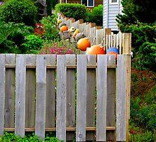 Oregon Coast Back Yard by Diane Arndt