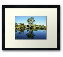 Gumtree Reflection Framed Print