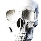 Skull facet - light by colatudo