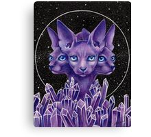 SpaceCat Canvas Print