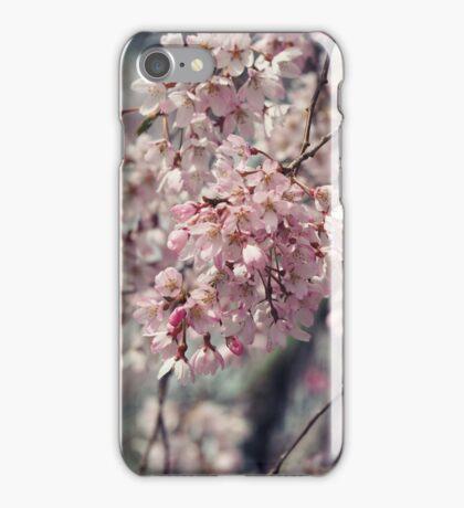 Serenade  iPhone Case/Skin