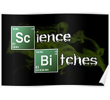 Science Bitches Poster