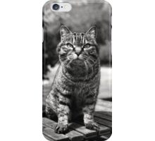 Happy the Cat iPhone Case/Skin