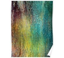 Colorful bark background Poster