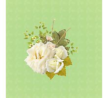 Summer - Bloomed 005 Photographic Print