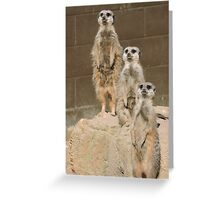 Uno Dos Tres Greeting Card