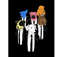 Dogs of the Reservoir Photographic Print