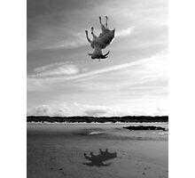 falling goat Photographic Print