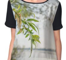 Weeping Willow Close to the River Chiffon Top