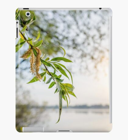 Weeping Willow Close to the River iPad Case/Skin