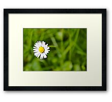 To Stand Alone Framed Print