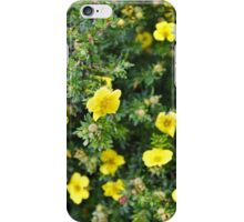 Many of a Kind iPhone Case/Skin