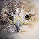 Fledgling Hawk by Linda Woodward