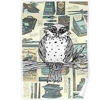 Dotti the Owl 3 Poster