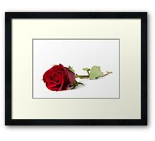 By Any Other Name... Framed Print