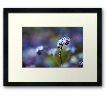 """Just living is not enough. One must have sunshine, freedom, and a little flower."" Framed Print"