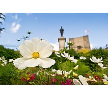 Castle Garden Photographic Print