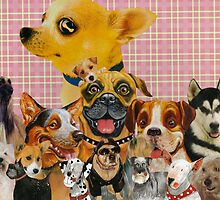 Dogs are Fun by kewzoo