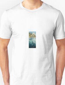 Diving Gannets Unisex T-Shirt