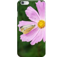 butterfly sitting on a pink flower iPhone Case/Skin