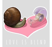 Snail Love is Blind Photographic Print