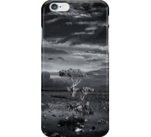 Tidal Flats iPhone Case/Skin