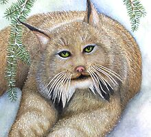 """LINUS""  Canadian Lynx, First Snow by ShireenJackson"